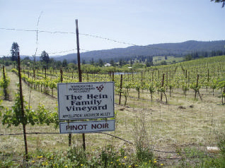 Anderson Valley: The Wineries, The Pinot   The PinotFile