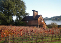Charles Heintz Vineyard