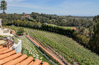 Dolin Malibu Estate Vineyards