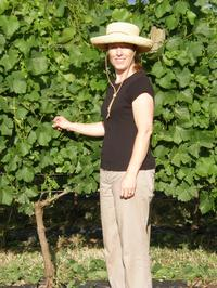 Laura Volkman Vineyards