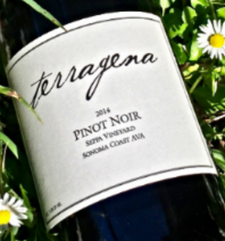 Terragena Vineyard